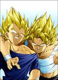 Photo de majin-vegeta-1998