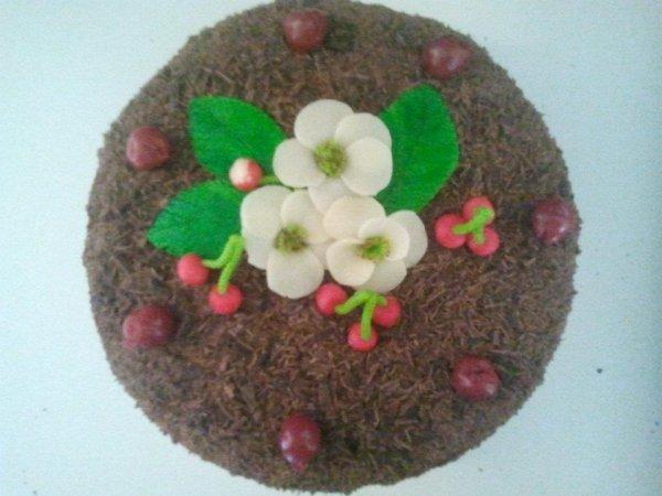 gâteaux fait maison
