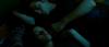 « Tu recommences à m'éboulir. » -Bella à Edward.