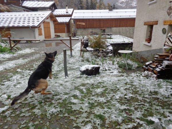 Coco neige :)