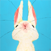 Lagomorphesource