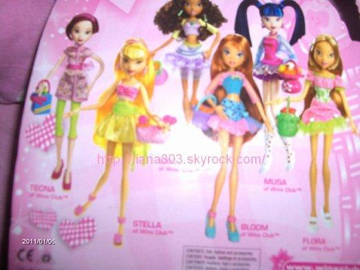 mes poupées winx pique nique !!