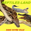 Photo de REPTILES-LAND