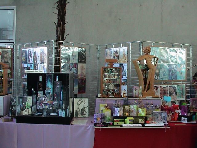 Exposition de Mulhouse 2008 Mon stand 4