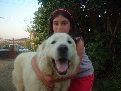 Doudou chien ♥