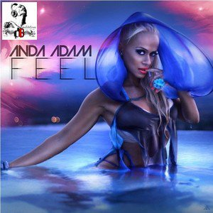 Anda Adam  / Feel (Original Radio Edit) (2011)