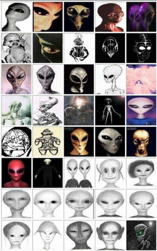 Ovni Alien Files S01 E11 Les Extraterrestres sont parmis nous