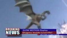 "Regarder ""Dragon sighting caught on Camera"" sur YouTube"