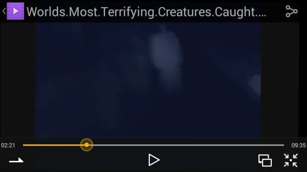 """Regarder """"Most Terrifying Creatures Caught On Tape 2015"""" sur YouTube"""