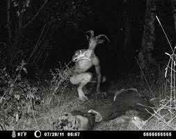 Goatman – L'homme-chèvre de l'Utah | MAXINE-VOYANCE