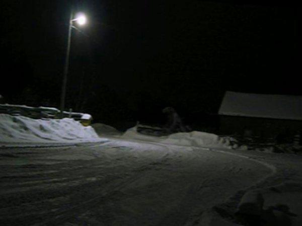 Michigan, Loup-Garou et photo… - Dark Ride Site sur le paranormal, les phénomènes étranges et inexpliqués.