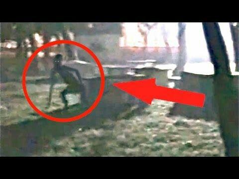 "Regardez ""The Rake Documentary"" sur YouTube"