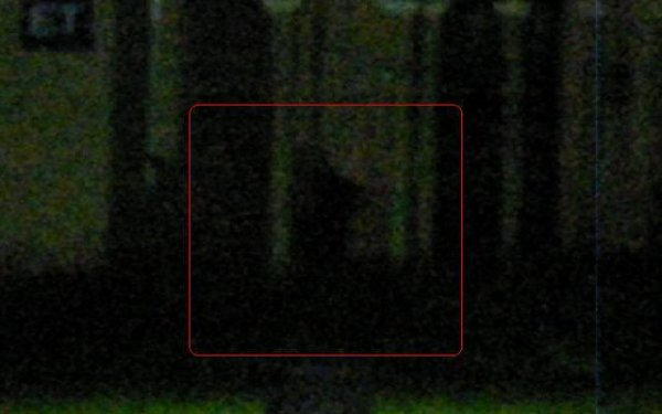 Les créatures de l'ombre ou «shadow people, ces êtres étranges dans le monde du paranormal