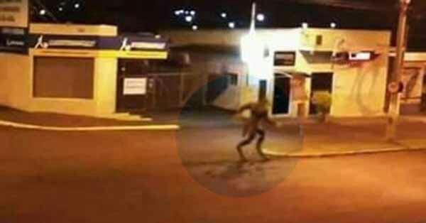Un loup garou a été filmé par une caméra de surveillance à Sao Paulo au Brésil | Le Nouvel Ordre Mondial