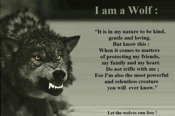 And out comes the wolves...fin