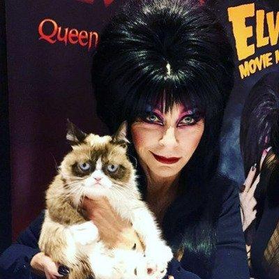 Elvira 2