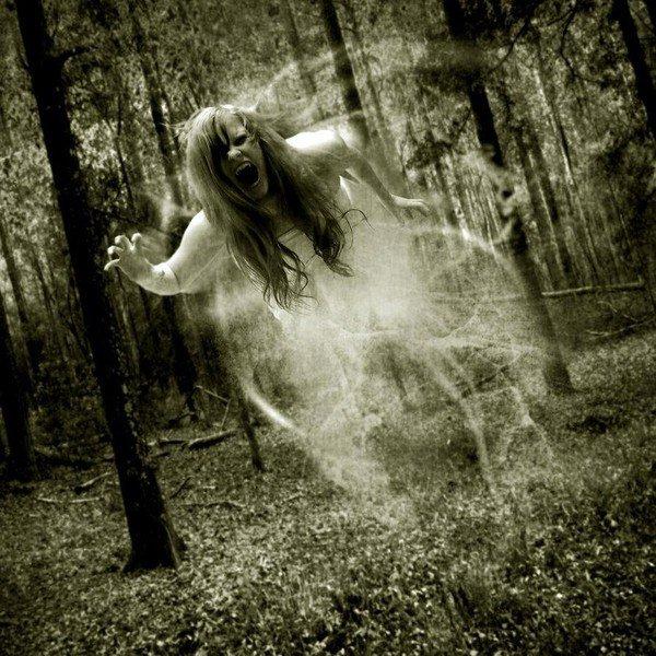Ghosts,bientot chez vous!