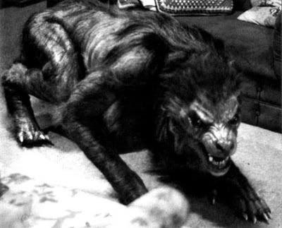 werewolves exists