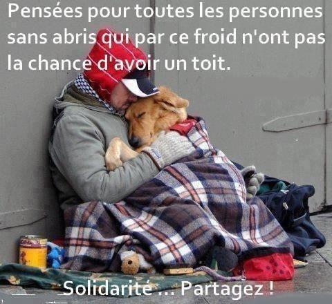 OUI Partagez pour qu'on n'oublient pas que pendant qu'on est bien au chaud des gens et des animaux dorment et vivent dehors
