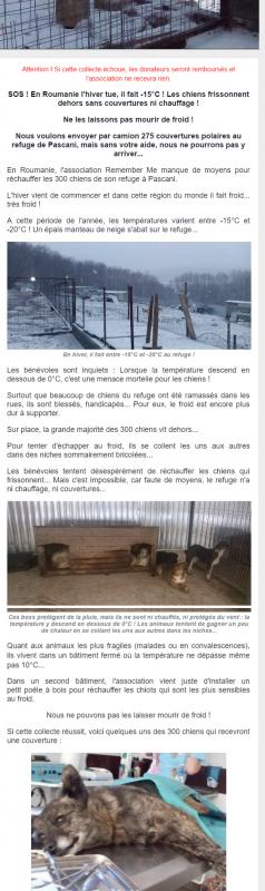 Svp cliquez sur le lien ci-dessous pour aider les chiens de Roumanie à ne pas mourir de froid! C GRATUIT!!!ça prend 2mn!!PARTAGEZ SVP!!!!