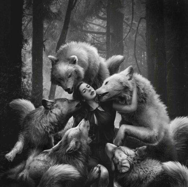 Entre Femme et Loup