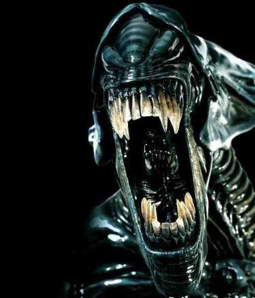 Love your Alien