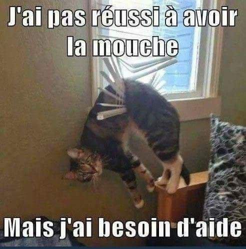 Humour pour Tous;)