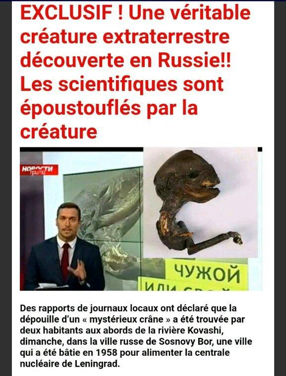 Découverte d'une incroyable créature extraterrestre en Russie