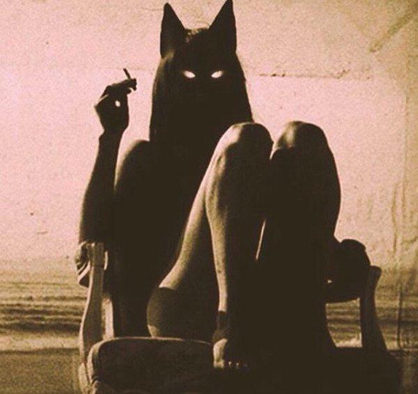 Love tour Darkness