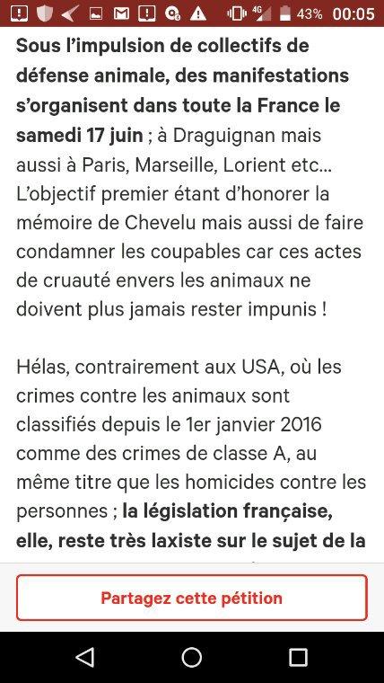 Pétition · Chat torturé à Draguignan : pour que justice soit rendue ! #JusticePourChevelu · Change.org