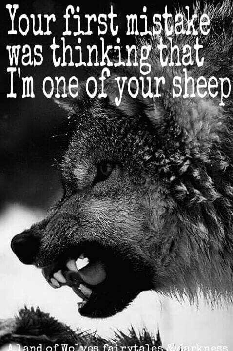 La Meute des 3 (Pour Indominus Wolf et Le Loup Virtuoz)