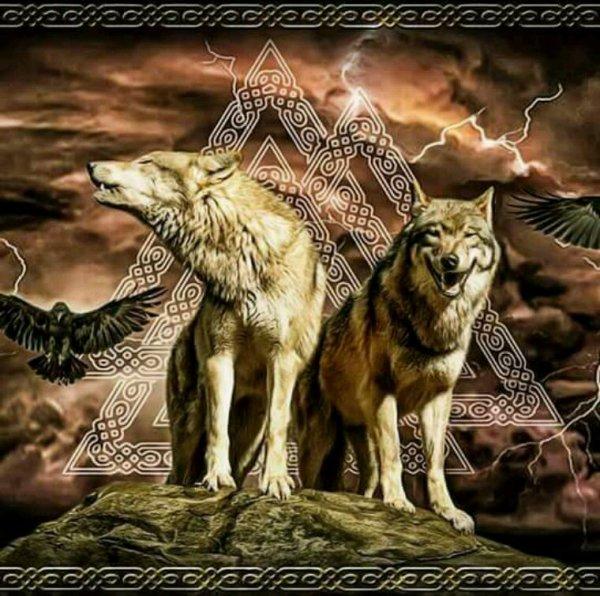 Les Loups d'Odin (C'est la soirée des Loups !)