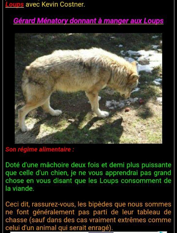 Les Loups du Gévaudan (1è partie)