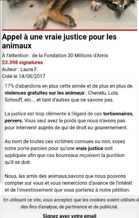 Il faut des sanctions lourdes pour kes cas de cruauté envers kes animaux, pour qu'enfin cessent ces horreurs !
