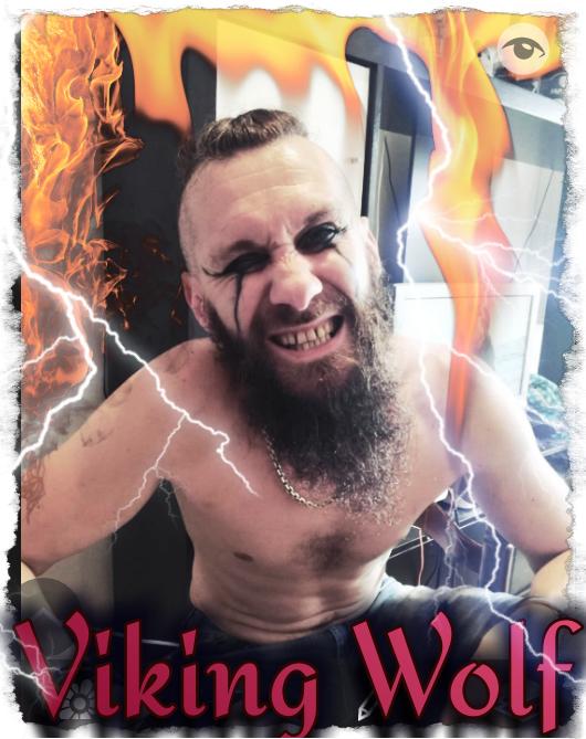 Mon loup mon Viking