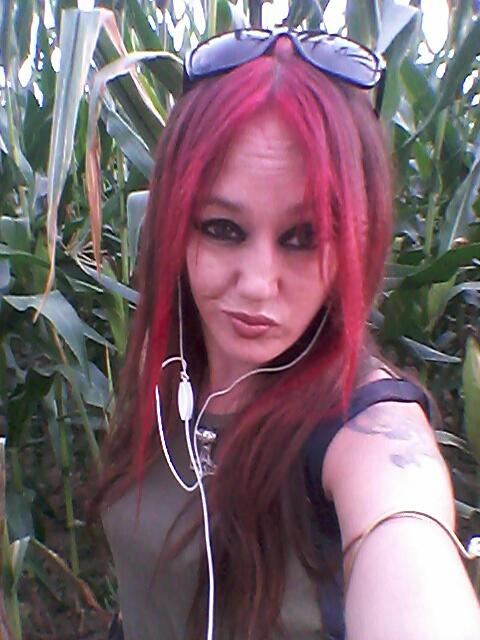 Balade dans les champs de maïs