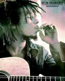 Photo de reggea-bob-marley