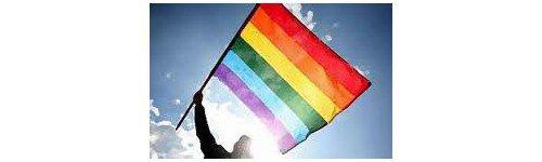 Lesbienne : femmme qui jouit sans penser à mâle