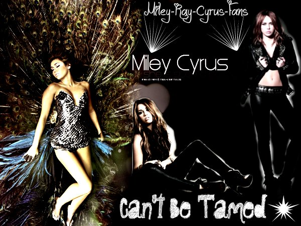 Montage Pour Miley-Ray-Cyrus-Fans