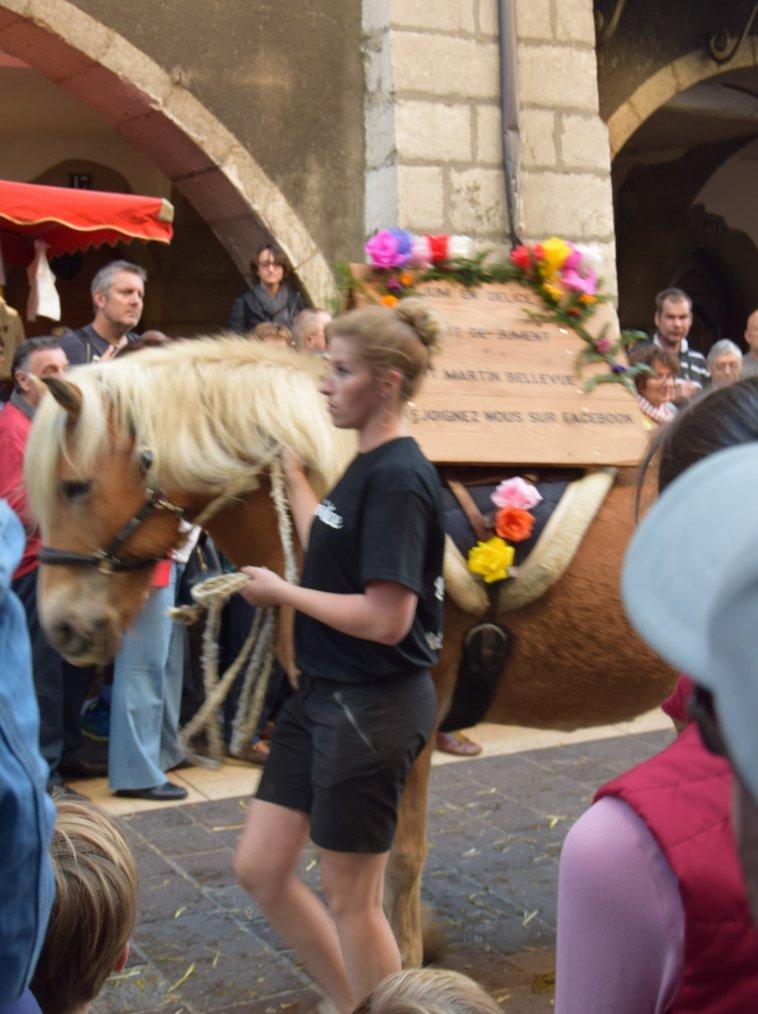 Retour des Alpages à Annecy le 14.10.2017