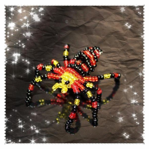 Mon Araignée... Ma préférée <3
