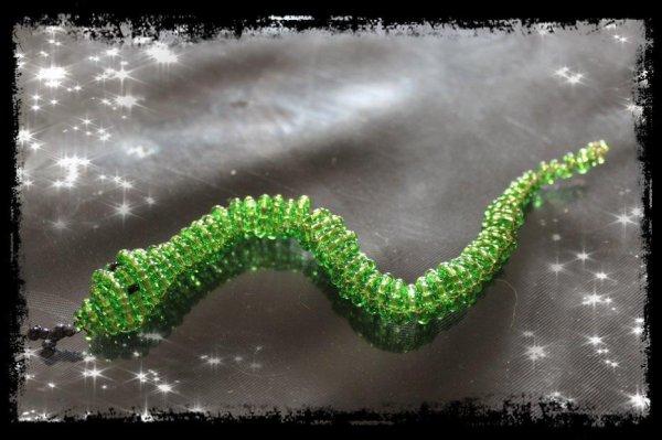 Mes Serpents!