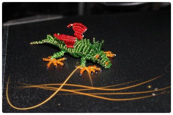 Mon Tout Premier Dragon