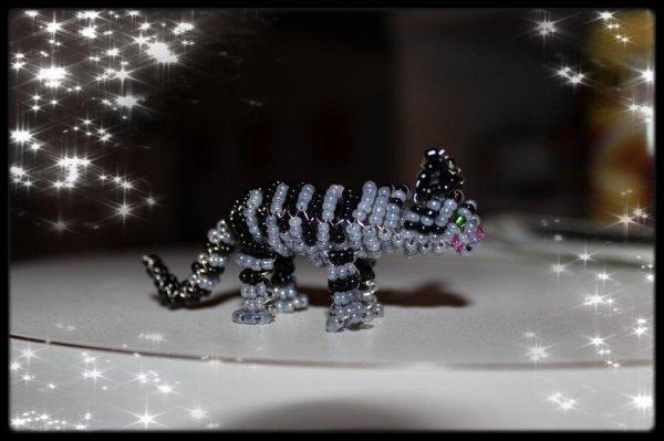 Un Chat Tigré Noir