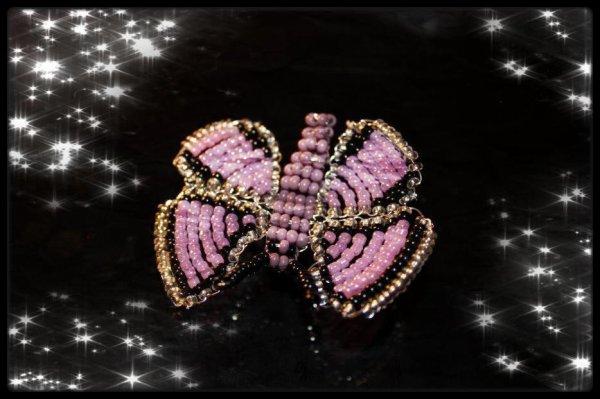 Vole Vole Papillon <3