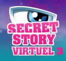 Photo de secretstory-virtuel-3
