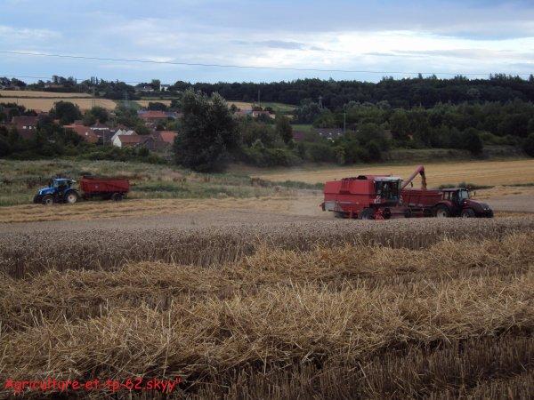 Moisson des blés 2010