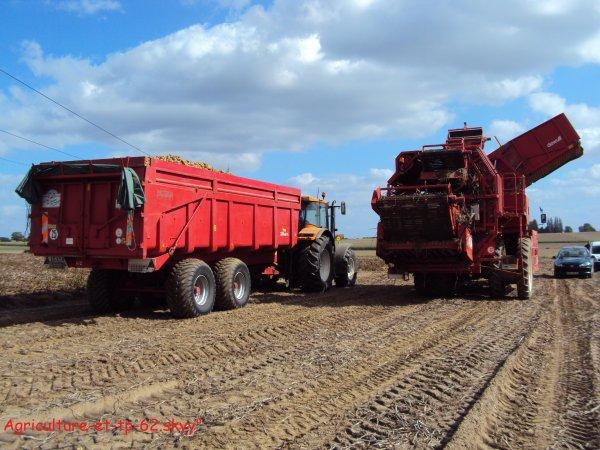 Arrachage de pommes de terre 2010