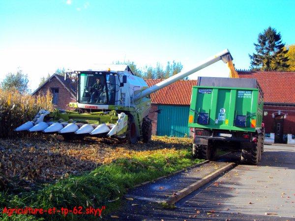 Moisson du maïs 2010