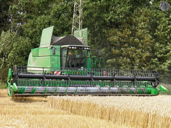 Moisson des blés 2011